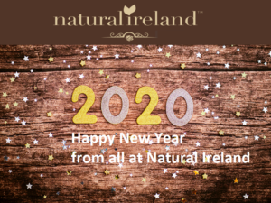 HAPPY NEW YEAR|2020