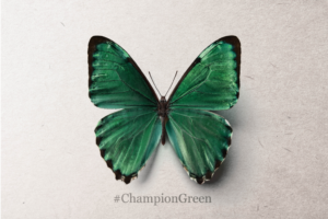 """""""Champion Green""""  Pledge Your Support Today"""
