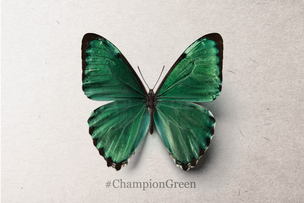 """Champion Green""  Pledge Your Support Today"